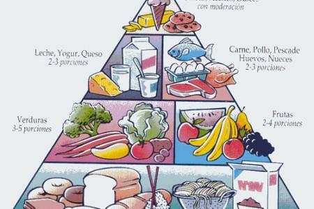 Obesidad y Equilibrio Energético, comer mejor y más sano