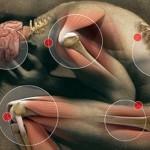 Buscando cura para el dolor crónico