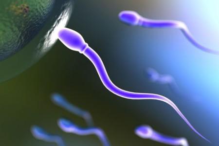 Falsas creencias y mitos sobre la anticoncepción