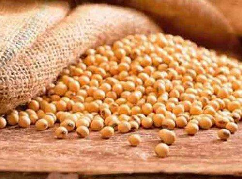 propiedades de la soja
